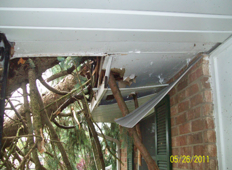 Storm Damage - Before