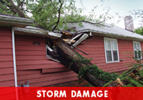 Storm Damage Cleanup - Dayton OH